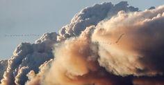 Bando de pássaros voa junto a coluna de fumaça dos incêndios florestais de Fort McMurray em Kinosis, em Alberta, no Canadá
