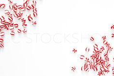 "Christmas Holiday Styled Stock Photography just in time to ""decorate"" your shop for Cyber Monday sales! Do business beautifully! Shay Cochrane www.shaycochrane.com Candy canes, stripes, red and white"