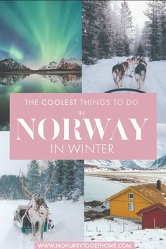 If you have developed the craze and love of traveling to cold places in the winter, then Norway should be right there at the top of your bucket list. Visiting Norway in winter is all about snowy outdoor adventures, furry… Europe Travel Guide, Travel Destinations, Travel Guides, European Destination, European Travel, Norway Winter, Visit Norway, Norway Travel, Winter Travel