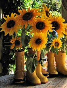 Floral Arrangement ~ Sunflowers in boots Happy Flowers, Beautiful Flowers, Sun Flowers, Sunflowers And Daisies, Sunflower Fields, Mellow Yellow, Just In Case, Floral Arrangements, Planting Flowers