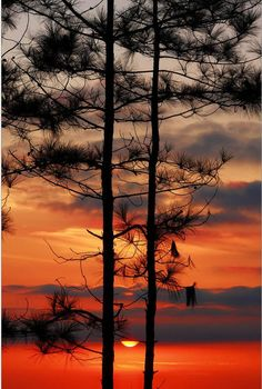 ✯ Beautiful Sunrise