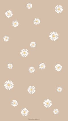 Many people believe that there is a magical formula for home decoration. You do things… Pastell Wallpaper, Daisy Wallpaper, Cute Patterns Wallpaper, Iphone Background Wallpaper, Aesthetic Pastel Wallpaper, Screen Wallpaper, Aesthetic Wallpapers, Daisy Background, Aztec Wallpaper