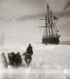 Norwegians led by Roald Amundsen arrived in Antarctica's Bay of Whales on January With dog teams, they prepared to race the British to the South Pole. Amundsen's ship, Fram, loaned by renowned. Old Pictures, Old Photos, Famous Photos, Antique Photos, Roald Amundsen, Jolie Photo, Interesting History, Tall Ships, World History