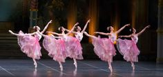 Boston Ballet Nutcracker Flowers
