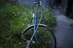 Alley okinawaby arifilmphoto.tumblr.comPresented as part of...