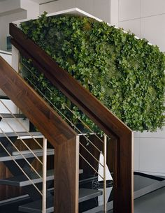 Loving the thick balustrade & green wall at Street residence NYC by Pulltab Design Vertical Garden Wall, Vertical Gardens, Indoor Water Garden, Indoor Plants, Indoor Ivy, Interior Exterior, Interior Design, Interior Garden, Interior Ideas