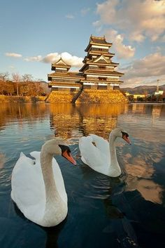 Matsumoto Castle by Martin Grice