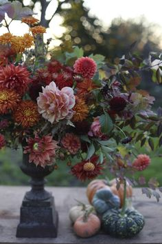 I really like the difference the light pink dahlia makes to this arrangement.and the way the other colours are nuanced in its pale petals Fall Wedding Flowers, Fall Flowers, Fresh Flowers, Beautiful Flowers, Autumn Wedding, Fall Bouquets, Wedding Bouquets, Seasonal Flowers, Flower Farm