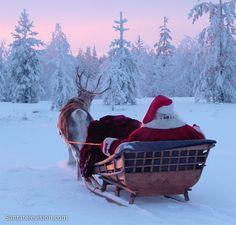 Père Noël avec son traîneau et son renne en Laponie en Finlande