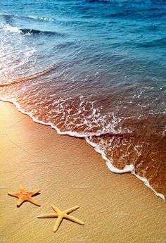 Ten babymoon ideas, with everything from beach breaks and romantic inns to budget-friendly babymoons at home!starfish on a beach sand by Liliia Rudchenko onBlissful Babymoon Ideas - 10 Ways to Spend Your Pre-Baby Vacation Ocean Wallpaper, Summer Wallpaper, Beautiful Ocean, Beautiful Beaches, Stock Foto, Beach Scenes, Beach Art, Beach Pictures, Ocean Waves