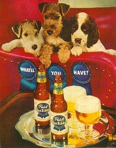 pabst - what'll you have? I'll have a double terrier please.