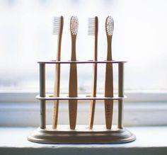 ausgefallene Zahnbürsten für Besucher | DerTypvonNebenan.de