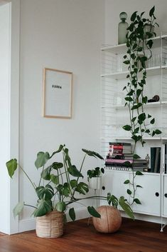30 incredible minimalist kitchen design 18 Featuring Modern Home Interior Design Ideas 30 incredible minimalist kitchen design April 2019 at in 30 incredible minimal Interior Simple, Modern Home Interior Design, Modern Design, Diy Plant Stand, Plant Stands, Boho Bedroom Decor, Living Room Interior, Plant Decor, Decorating Your Home
