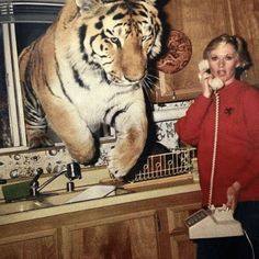 """Tippi Hedren & her tiger Gregory on the set of the 1981 film Roar. In all, 70 cast and crew members were hurt by the supposedly """"Tame"""" animals. Some were life-threatening. Tippi Hedren, O Samara, Baba Vanga, Melanie Griffith, Photo Couple, Foto Art, Cursed Images, Dakota Johnson, Nature Photos"""