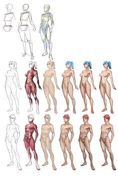 Concept Art Characters Tutorials Anatomy New Ideas, Anatomy Sketches, Anatomy Drawing, Body Drawing, Anatomy Art, Art Sketches, Art Drawings, Manga Drawing, Figure Drawing Tutorial, Sketches Tutorial