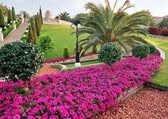 """Képtalálat a következőre: """"gyonyoru viragos kertek"""" Sicily Travel, Garden Park, Topiary, Beautiful Flowers, Sidewalk, Plants, Gardens, Faith, Blog"""