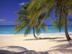 Gorgeous Seven Mile Beach in Grand Cayman - I can feel the stress lifting just looking at it!