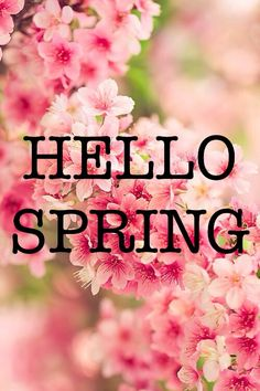 Hello Spring & what