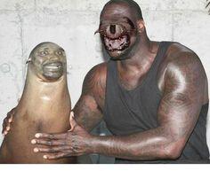 Shaq & a seal face swap
