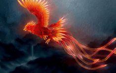 80+ Phoenix Bird Wallpapers on WallpaperPlay Mythological creatures Mythical creatures Chinese mythology