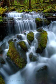 Mossy Falls, Washington State.
