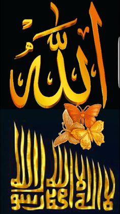 Animasi Foto Gift Animation, Coran Islam, Allah Wallpaper, Islamic Art Calligraphy, Glitter Graphics, Arabesque, Quran, Best Gifts, Flower