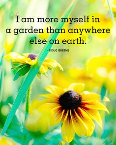 30 Absolutely Beautiful Quotes About Summer Inspirational quotes and sayings about summer: I am more myself in a garden than anywhere else on earth. -Doug Greene The post 30 Absolutely Beautiful Quotes About Summer appeared first on Diy Flowers. Organic Gardening, Gardening Tips, Gardening Vegetables, Gardening Gloves, Gardening Memes, Fairy Gardening, Gardening Books, Hydroponic Gardening, Flower Gardening