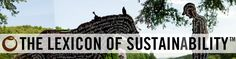 Fair Trade vs. Direct Trade | The Lexicon of Sustainability | PBS Food