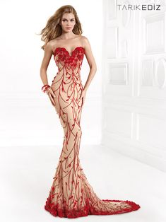 18 Elegant Evening Dresses By Tarik Ediz 2014