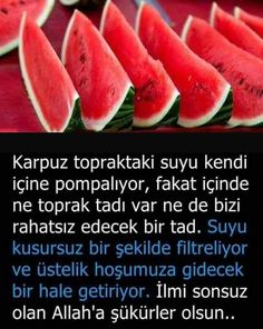 Bilgi Best Jewelry Stores, Watermelon, Fun Facts, It Works, Good Things, Fruit, Instagram, Fitness, Pictures