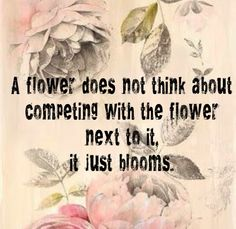 thought, inspirational quotes, flower bloom quote