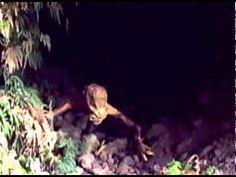 ▶ Winner Best UFO Sighting Alien Encounter Caught On Tape 2011 - YouTube