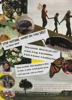 Art Lessons, The Outsiders, Let It Be, Bird, Poem, Collages, Scrapbook, Ideas, Color Art Lessons