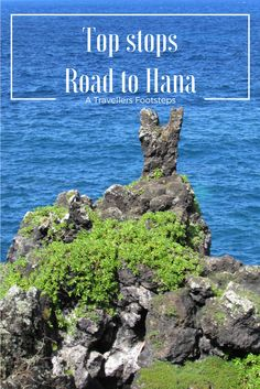 All the best stops on the road to Hana, shared in this blog