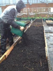 "Plus, ""lasagna"" material layering. Raised Flower Beds, Raised Garden Beds, Raised Beds, Gardening For Beginners, Gardening Tips, Pallets Garden, Pallet Gardening, Growing Veggies, Edible Garden"