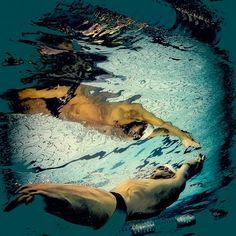Kerstin Kuntze, mirror me° on ArtStack #kerstin-kuntze #art