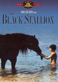 The Black Stallion The movie tells the story of Alec Ramsey, who is shipwrecked on a deserted island with The Black, a wild Arabian stallion whom he befriends. After being rescued, Alec begins training The Black to race against the fastest horses in the world.