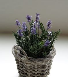how to: lavender looks very easy, need flower soft