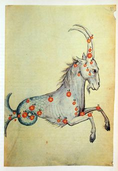"Al Sufi, Capricorn. Al Sufi published his famous ""Book of Fixed Stars"" in 964 (Al Sufi, describing much of his work, both in textual descriptions and pictures. Astrology Capricorn, Capricorn Love, Capricorn Tattoo, Vedic Astrology, Capricorn Traits, Tarot, Medieval Manuscript, Medieval Art, Constellations"