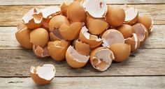 Reuse eggshells - don't throw them away! If you've been tossing your eggshells, I'm about to convince you to keep them. No eggshells in my trash cans!