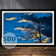 Downloadable image, digital photo, printable wall art, silhouette, forest, sky, cloud, dead tree, leafless, sunlight, Vienna, Austria Tree Photography, Tree Silhouette, Photo Tree, Landscape Photos, Nature Photos, Printable Wall Art, Vienna Austria, Clouds, Sunlight