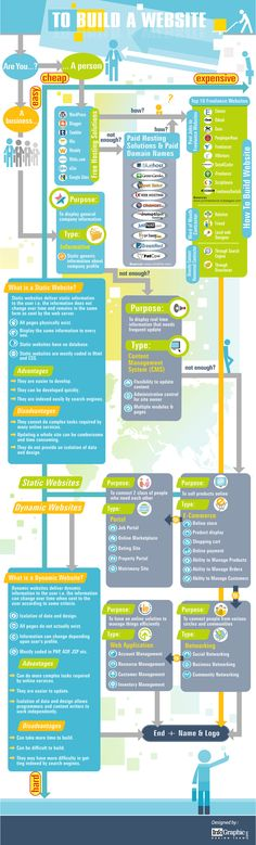 Build Your Website Infographic
