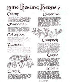 ☆ Nine Healing Herbs ☆