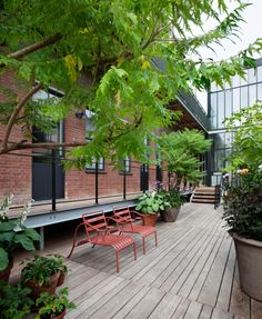 Stout & Co. - Amsterdam - Luxury bed & Breakfast - green roof terras - atelier vierkant