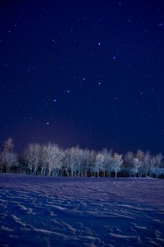 The stars shine brightly on the farm. It is easy there to see the big and little dippers...