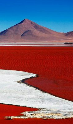 Bolivie Laguna Colorada is a salt lake in Bolivia that gets its red colour from the pigmentation of algae Places Around The World, Around The Worlds, Beautiful World, Beautiful Places, Places To Travel, Places To Visit, Travel Destinations, Holiday Destinations, Bolivia Travel