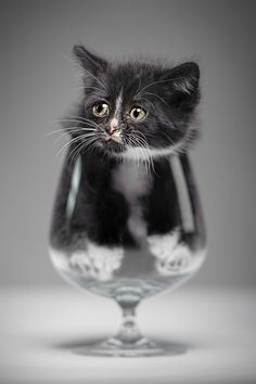 Have a drink? by Denis  on 500px