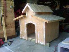Dog house, #dog house