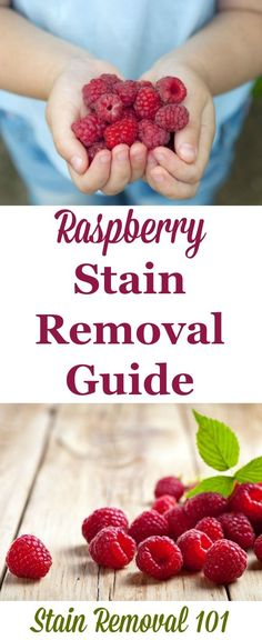 Step by step raspberry stain removal guide for clothing, upholstery and carpet {on Stain Removal 101}
