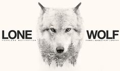 Wolf quotes and saying. The Wolf is a symbol of guardianship, instinct, loyalty, and spirit. The Wolf represents strong connection with instincts and intuition, high intelligence and communication – qualities we all should aspire to. Great Quotes, Me Quotes, Motivational Quotes, Inspirational Quotes, On My Own Quotes, Lion Quotes, Drake Quotes, Motivational Thoughts, Quotes Positive